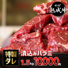 【ふるさと納税】氷温(R)熟成牛 漬込みハラミ 訳あり1.5kg