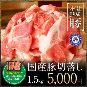 【ふるさと納税】氷温(R)熟成豚 国産豚切落し1.5kg(300gx5パック)
