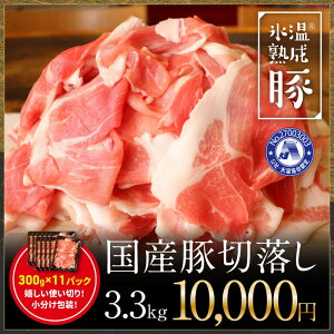 【ふるさと納税】氷温(R)熟成豚 国産豚切落し3.3kg(300gx11パック)