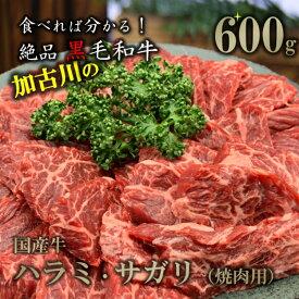 【ふるさと納税】国産牛 焼肉用(ハラミ・サガリ)600g