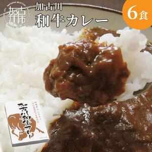 【ふるさと納税】加古川和牛カレー(6食入)