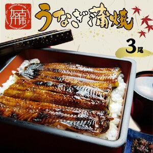 【ふるさと納税】鰻の蒲焼き3尾(6パック)、たれ別、挽きたて粉山椒付