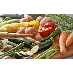 【ふるさと納税】加西市産 季節の野菜詰め合わせセット 【野菜類・セット・詰合せ・やさい】
