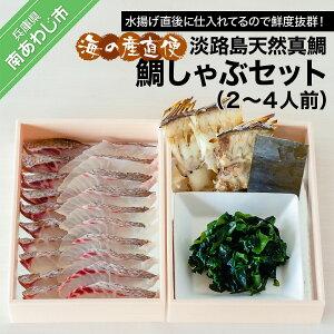 【ふるさと納税】海の産直便 淡路島天然真鯛 鯛しゃぶセット(2〜4人前)