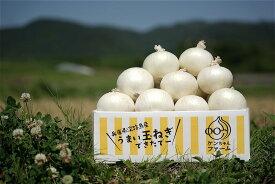 【ふるさと納税】希少!ケンちゃんファームの特別栽培真っ白な白たまねぎ 3kg 〜ひょうご安心ブランド認証取得〜