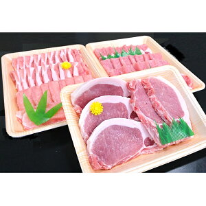 【ふるさと納税】ヤマトポーク詰合わせ 【肉・豚肉・しゃぶしゃぶ・ポーク・セット】