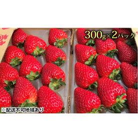 【ふるさと納税】今西さん家の奈良いちご古都華300g×2パック 【果物類・いちご・苺・イチゴ・2パック】 お届け:2021年12月中旬〜2022年4月上旬