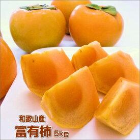 【ふるさと納税】富有柿 5kg 和歌山産