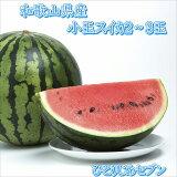 【ふるさと納税】小玉スイカ(2玉〜3玉)