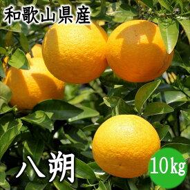 【ふるさと納税】和歌山県産 八朔 10kg