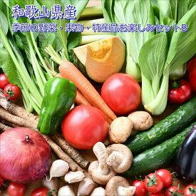 【ふるさと納税】季節の野菜・果物・特産品お楽しみ詰め合わせセットB