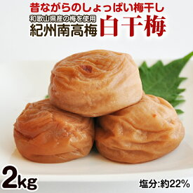 【ふるさと納税】昔ながらのしょっぱい梅干し 2kg 中粒2L 和歌山県産