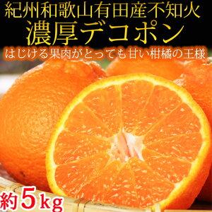 【ふるさと納税】果肉プリプリ♪紀州デコ約5kg