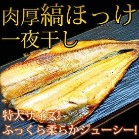 【ふるさと納税】■和歌山魚鶴仕込の国産特大サイズを厳選!縞ほっけ一夜干し