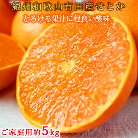 【ふるさと納税】とろける食感!ジューシー柑橘 せとか 約5kg(ご家庭用)※傷あり※2021年2月上旬頃〜2月下旬頃に順次発送予定◆