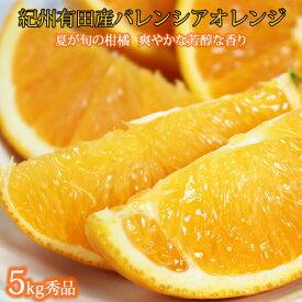 【ふるさと納税】■秀品 希少な国産バレンシアオレンジ 5kg※2021年6月下旬〜7月中旬頃発送の商品になります
