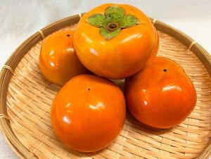【ふるさと納税】和歌山秋の味覚 富有柿 約7.5kg※2020年10月下旬〜11月下旬頃に順次発送予定