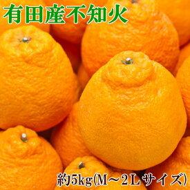 【ふるさと納税】■【春柑橘の代表格】有田で採れた不知火(デコポン)約5kg(M〜2Lサイズおまかせ)※お届け日指定不可※2021年2月中旬〜3月下旬頃に順次発送予定