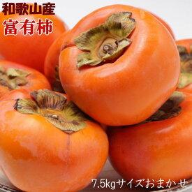 【ふるさと納税】[甘柿の王様]和歌山産富有柿約7.5kgサイズおまかせ※2020年10月下旬〜12月初旬頃に順次発送予定