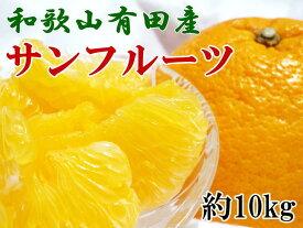 【ふるさと納税】■和歌山有田産サンフルーツ10kg(M〜3Lサイズおまかせ)※2020年3月下旬〜4月下旬に順次発送予定