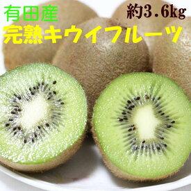 【ふるさと納税】■【人気】有田産完熟キウイフルーツ約3.6kg(サイズおまかせ)