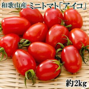 【ふるさと納税】【2月出荷分】和歌山産ミニトマト「アイコトマト」約2kg(S・Mサイズおまかせ)※2020年2月から順次発送予定
