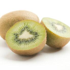 【ふるさと納税】【12月発送】キウイフルーツ1.5kg