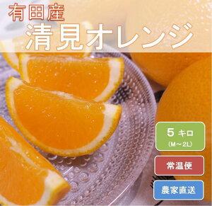 【ふるさと納税】和歌山県有田産 完熟清見オレンジ ひとつひとつ丁寧に厳選!生産者から直送※2020年3月中旬〜4月下旬頃までに順次発送予定