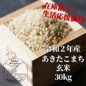 【ふるさと納税】KG1 おおがや米 あきたこまち 玄米30kg