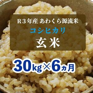 【ふるさと納税】W58<令和3年産 新米定期便予約> あわくら源流米 コシヒカリ 玄米30kg×6