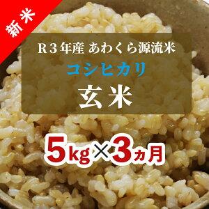【ふるさと納税】W67<令和3年産 新米定期便> あわくら源流米 コシヒカリ 玄米5kg×3