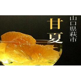 【ふるさと納税】甘夏 萩産 約10kg 【果物類・柑橘類・フルーツ】 お届け:2021年4月1日〜5月15日