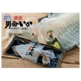 【ふるさと納税】自宅で透明感を再現!須佐男命いかの姿造り(刺身)特殊冷却「3D冷凍」パック 2個セット 【魚貝類・イカ・刺身】 お届け:2021年6月〜2022年1月 ※出荷は6月からとなります。