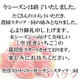 【ふるさと納税】空浮いちご 8パック※クレジット限定 【いちご・苺・イチゴ・果物類・フルーツ】 お届け:2021年1月中旬〜2021年5月下旬