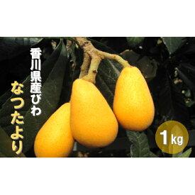【ふるさと納税】初夏の果実 なつたより(びわ) 【果物類・フルーツ・びわ・枇杷・果物類・フルーツ】 お届け:2021年5月下旬〜6月中旬