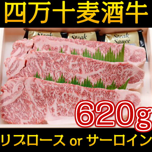 【ふるさと納税】Asz-09 四万十麦酒牛(しまんとビールぎゅう)のロースステーキセット