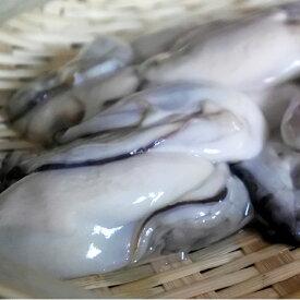 【ふるさと納税】【A-370】魚市場厳選 冷凍むき身牡蠣(加熱調理用)2kg
