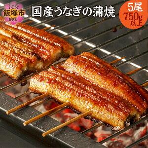 【ふるさと納税】【B5-033】魚市場厳選 国産うなぎの蒲焼き(5尾)