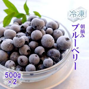 【ふるさと納税】ベリー畑 冷凍ブルーベリー 500gx2(福田ファーム)国産 果物 フルーツ 送料無料