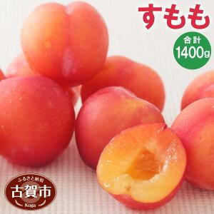 【ふるさと納税】 すもも 4パック 350g×4 合計1400g 1.4kg スモモ  果物 くだもの フルーツ 冷蔵 福岡県産 送料無料 【2020年6月より順次発送】