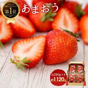 【ふるさと納税】<予約>あまおう 約280g×4パック(2020年1月〜4月順次発送)合計約1,120g 福岡県産 九州 イチゴ いちご 苺 果物 くだもの フルーツ 送料無料 ご家庭用
