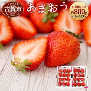 【ふるさと納税】<予約>あまおう 約400g×2パック(2020年1月〜4月順次発送) 合計約800g 福岡県産 九州 イチゴ いちご 苺 果物 くだもの フルーツ 送料無料