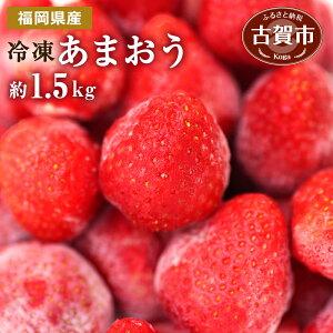 【ふるさと納税】冷凍いちご(あまおう)約1.5kg ジャム シロップ スムージー 冷凍 イチゴ 苺 あまおう 果物 くだもの フルーツ 冷凍果実 冷凍フルーツ 先行予約 送料無料【2020年3月下旬より