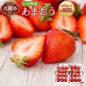 【ふるさと納税】<予約>あまおう 約400g×2パック(2019年12月順次発送) 合計約800g 福岡県産 九州 イチゴ いちご 苺 果物 くだもの フルーツ 送料無料