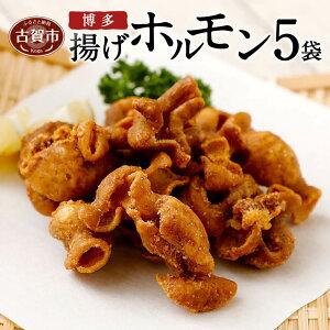 【ふるさと納税】博多揚げホルモン(5袋セット) ホルモン 国産豚 唐揚げ おつまみ 送料無料