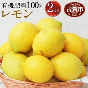 【ふるさと納税】数量限定 レモン 2kg 有機肥料100% 九州 福岡県産 国産 レモン フルーツ 果物 送料無料【2020年12月中旬より順次発送予定】