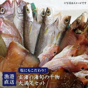 【ふるさと納税】塩にもこだわり!玄海の海旬の干物大満足セット(5,6人向け) 福ふくの里 ALD004