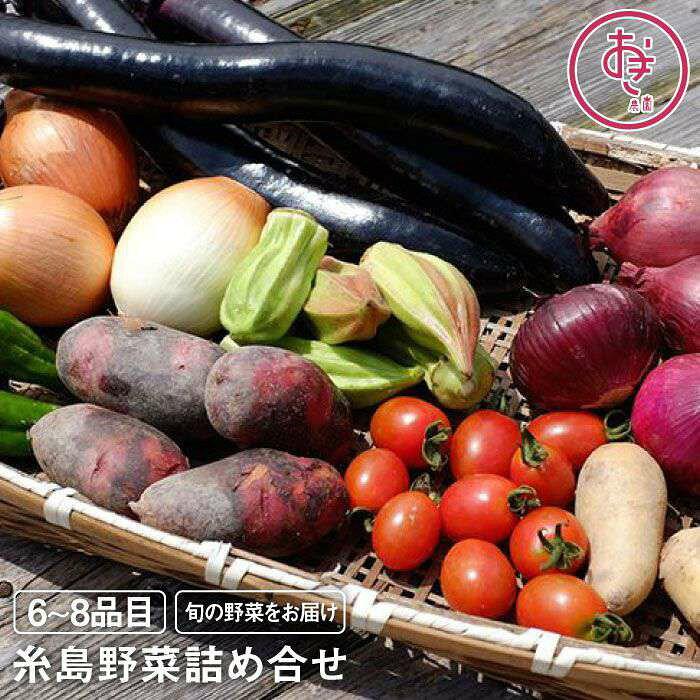【ふるさと納税】おき農園の旬の糸島野菜の詰め合わせ