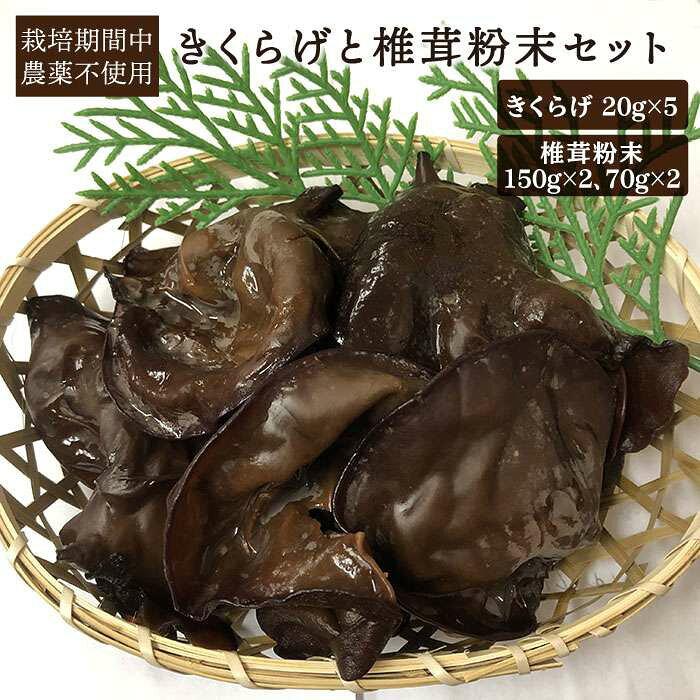 【ふるさと納税】国産菌床肉厚で良質キクラゲと椎茸粉末セットAFC001