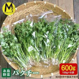 【ふるさと納税】糸島産パクチー600g(100g×6袋) MURA FARM AFD001